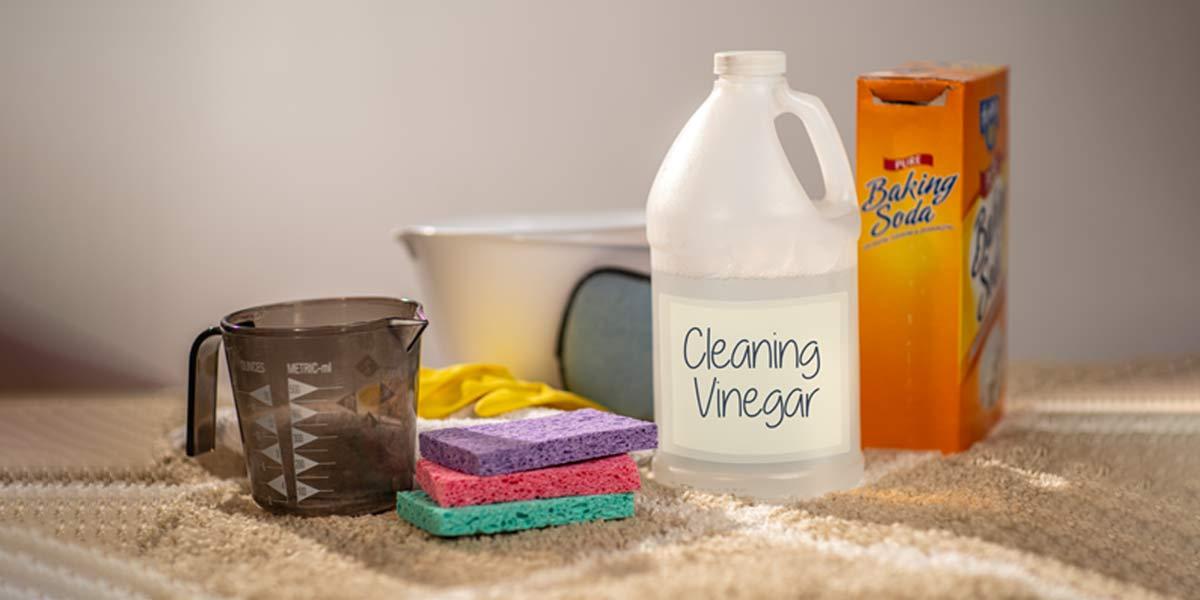 سرکه سیب برای شستشوی فرش و پاک کردن سطوح مختلف یک ترکیب فوقالعاده است