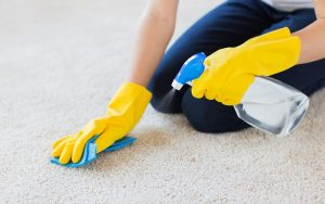 شامپو فرش