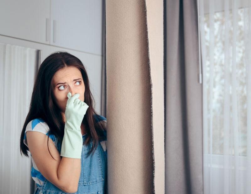 نکات و روش های رفع بوی بد فرش