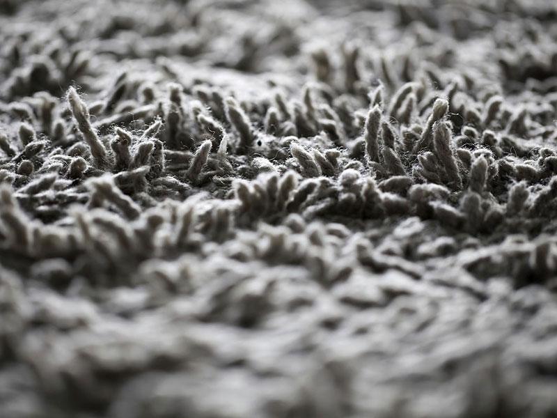 3 روش جلوگیری از کوبیدگی فرش و قالی